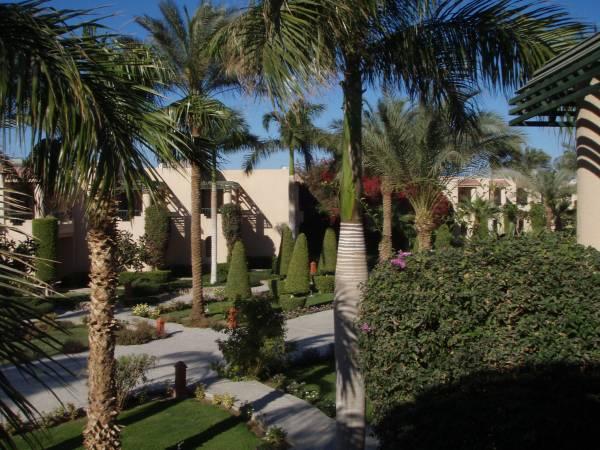 али баба палас хургада Гвинтекс: туры в Египет, Тайланд, ОАЭ - отдых - Турция.