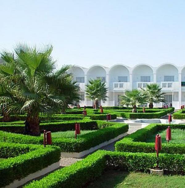 Oasis 5 риф оазис египет шарм эль шейх