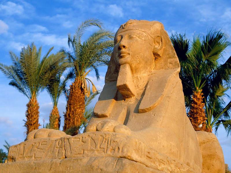 Отзывы об знакомствах в египте для женщин знакомства моймир