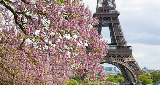 Туры во францию на майские праздники